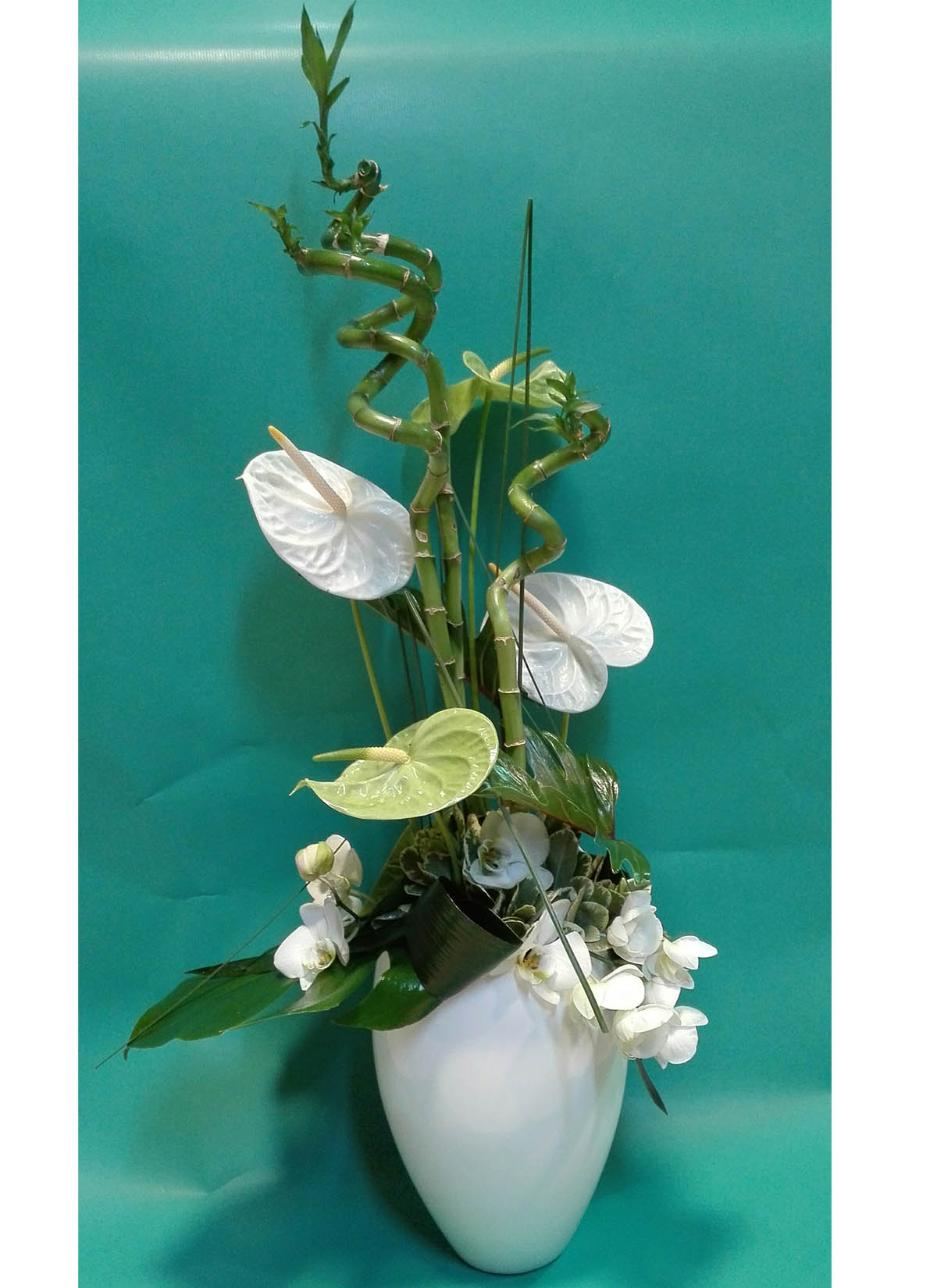 Compositions Florales Castelnaudary